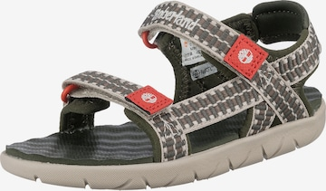 TIMBERLAND Sandals & Slippers 'Perkins' in Green