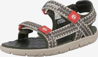 TIMBERLAND Sandale 'Perkins' in khaki / dunkelgrün / feuerrot / weiß, Produktansicht