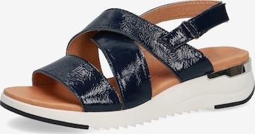 CAPRICE Sandals in Blue