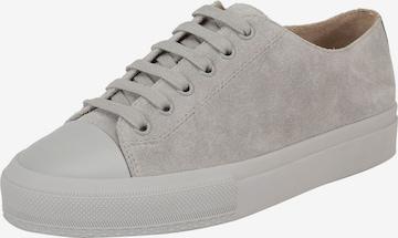 Ekonika Sneakers in Grey