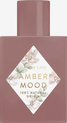 Juniper Lane Fragrance 'Art du Parfum 'Amber Mood' in