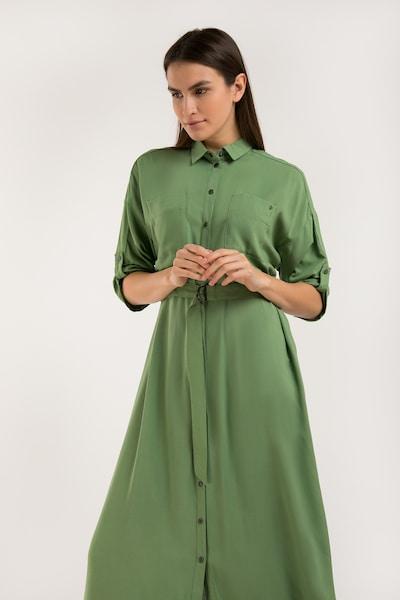 Finn Flare Blusenkleid in grün, Modelansicht