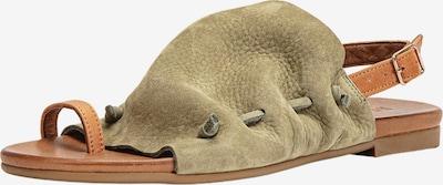 INUOVO Sandale in braun / grün, Produktansicht