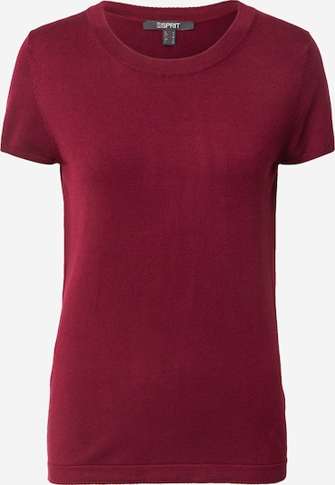 Esprit Collection Shirt in bordeaux, Produktansicht