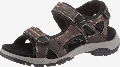 TOM TAILOR Sandals in Mocha / Orange / Black, Item view