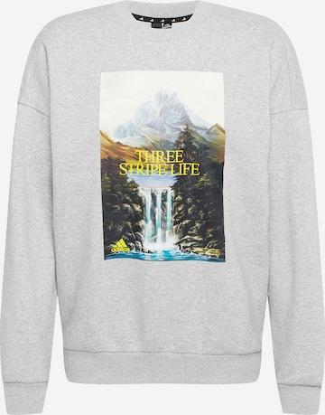 ADIDAS PERFORMANCE Athletic Sweatshirt in Grey