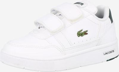 LACOSTE Schuhe in dunkelblau / weiß, Produktansicht