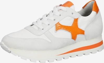 PETER KAISER Baskets basses en gris / orange / blanc, Vue avec produit