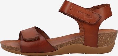 COSMOS COMFORT Sandales en marron, Vue avec produit