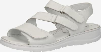 CAPRICE Sandale in weiß, Produktansicht