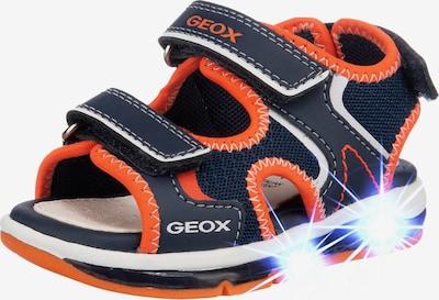 GEOX Sandale 'Todo' in marine / dunkelorange / weiß, Produktansicht