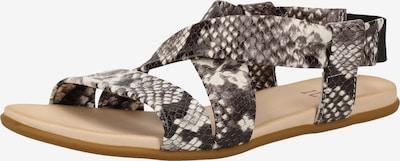 ILC Sandalen in schwarz / weiß, Produktansicht