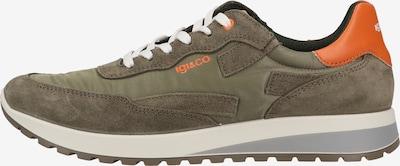 IGI&CO Sneaker in grün, Produktansicht