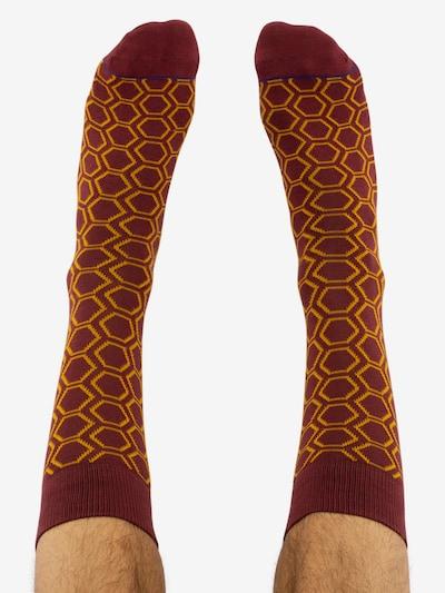 CHEERIO* Ponožky 'HEXAWHAT' - zlatá žltá / bordová, Model/-ka