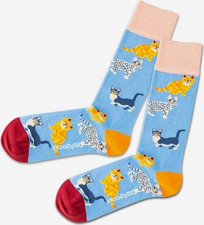 DillySocks Socken 'Water Cats' in hellblau / mischfarben, Produktansicht