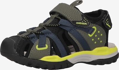 GEOX Sandale in gelb / khaki / schwarz, Produktansicht