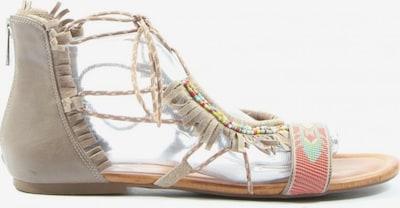 JESSICA SIMPSON Riemchen-Sandalen in 39,5 in wollweiß, Produktansicht