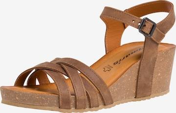 Sandales à lanières TAMARIS en marron