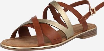ESPRIT Sandale s remenčićima 'Moa' u smeđa / zlatna, Pregled proizvoda