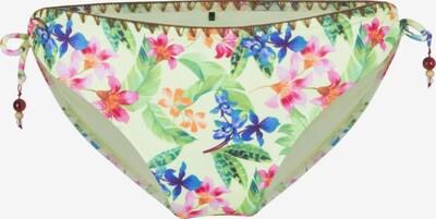 LingaDore Bas de bikini en mélange de couleurs, Vue avec produit