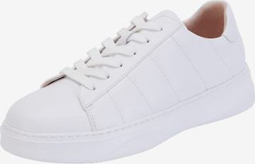 Ekonika Sneakers 'Portal' in White