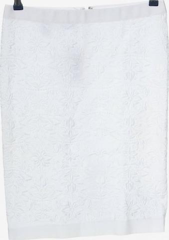 Philosophy di Alberta Ferretti Skirt in S in White