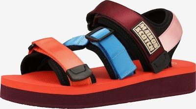 SCOTCH & SODA Sandales de randonnée en mélange de couleurs, Vue avec produit