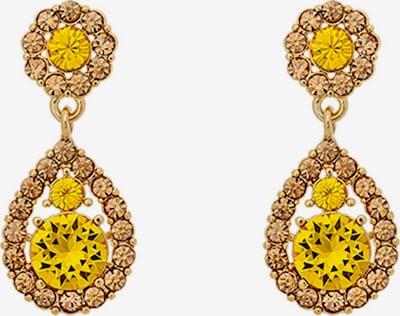 LILY AND ROSE Örhängen 'Sofia' i gul / guld, Produktvy