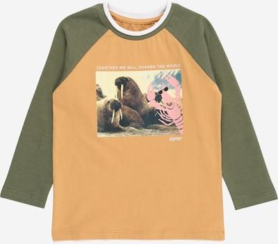 ESPRIT KIDS Shirt in karamell / pastellgelb / oliv / rosa / weiß, Produktansicht