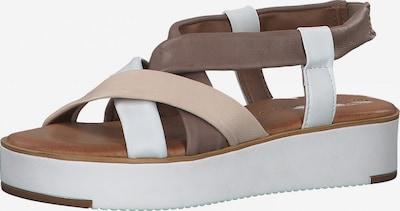 TAMARIS Páskové sandály - béžová / vínově červená / offwhite, Produkt