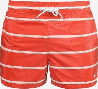 BLEND Shorts 'Salvio' in rot / grenadine, Produktansicht