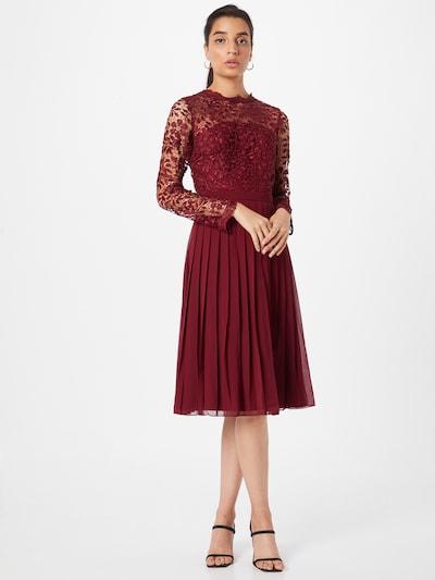 Chi Chi London Šaty - burgundská, Model/-ka