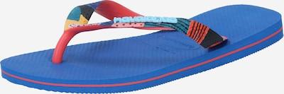 HAVAIANAS Teenslipper in de kleur Blauw / Mintgroen / Rood, Productweergave