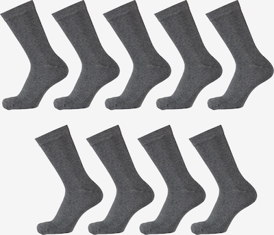 Apollo Socken in grau, Produktansicht