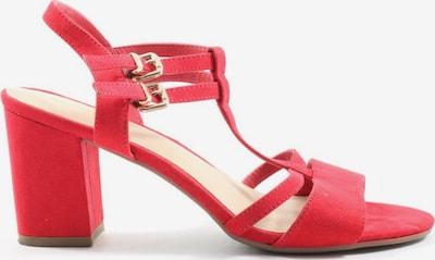 Graceland Riemchen-Sandaletten in 38 in rot, Produktansicht