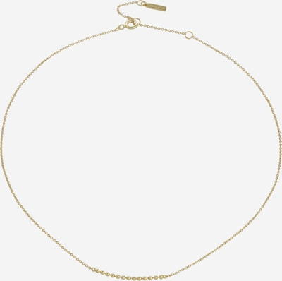 ANIA HAIE Kette in gold, Produktansicht