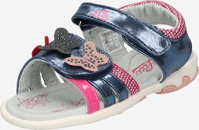 LICO Sandalen 'Lindsey V' in de kleur Duifblauw / Donkerroze, Productweergave