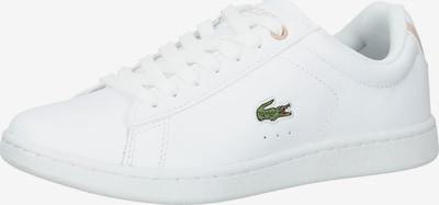 LACOSTE Sneaker in grün / rosa / weiß, Produktansicht
