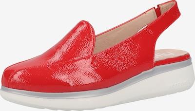 Wonders Slipper in rot, Produktansicht