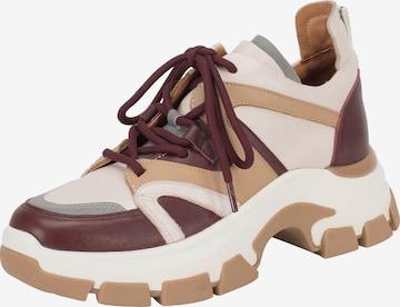 Ekonika Sneakers in Mixed colors
