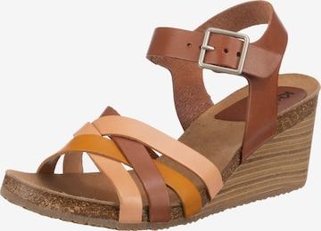 KICKERS Sandale in Braun