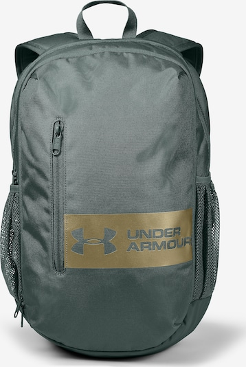 UNDER ARMOUR Rucksack ' Roland ' in hellgrau: Frontalansicht