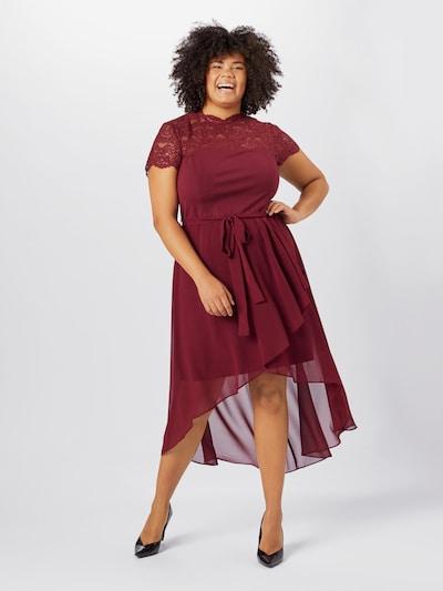 Forever New Kleid in weinrot, Modelansicht