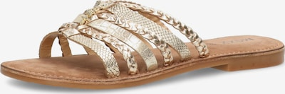 MEXX Pantolette 'EARLY' in gold, Produktansicht