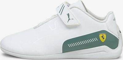 PUMA Sneakers 'Ferrari Drift Cat' in de kleur Groen / Wit, Productweergave