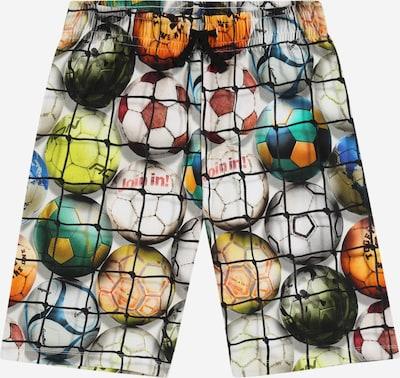 Molo Pantalon 'Alim' en mélange de couleurs, Vue avec produit