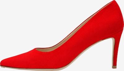 Feraggio Pumps 'Scarlet Red Pumps 7.5 cm' in rot, Produktansicht