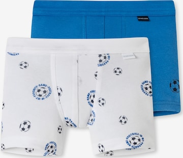 SCHIESSER Underpants ' Basic Kids ' in Mixed colours