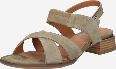 CAPRICE Sandale in grün, Produktansicht