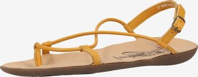 FLY LONDON Sandale in gelb, Produktansicht